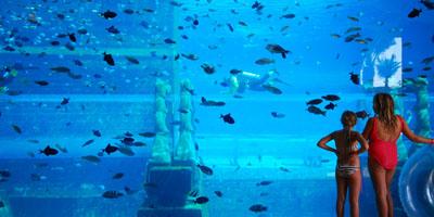 Aquariums & Marine Parks